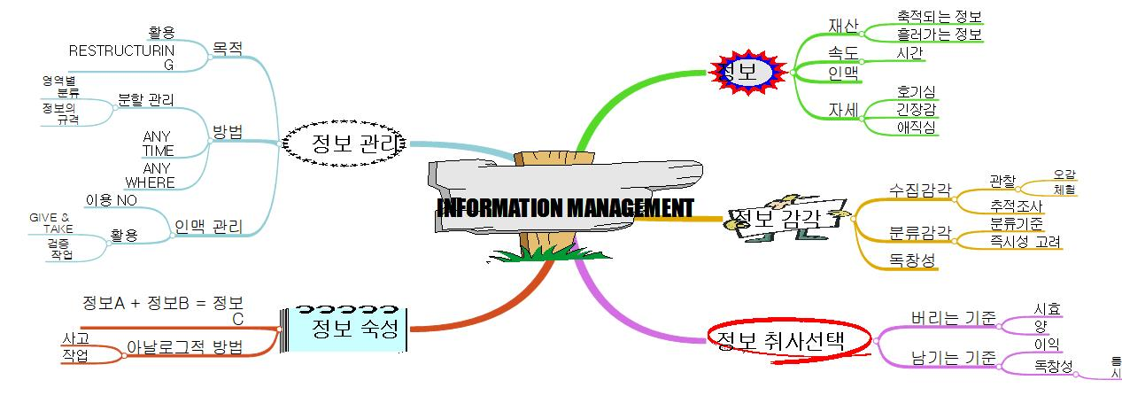 Information Management 이미지